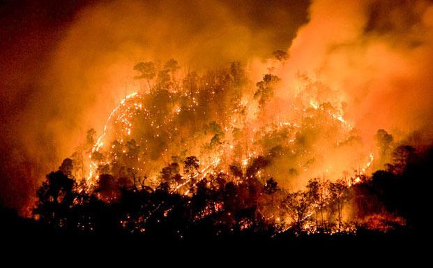 Το ΕΕΑ δίπλα στους πληγέντες των φονικών πυρκαγιών